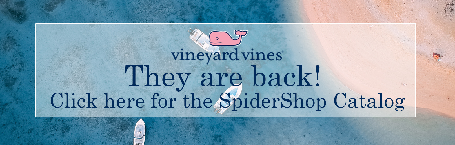 Vineyard Vines back