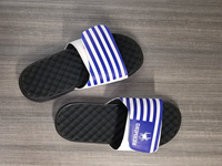 iSlide White and Blue FlipFlop
