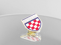 University of Richmond Crest Pin