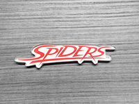 Spiders 4 Inch Magnet